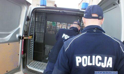 Policjanci zatrzymali dwóch mężczyzn podejrzanych o kradzież z włamaniem do garażu